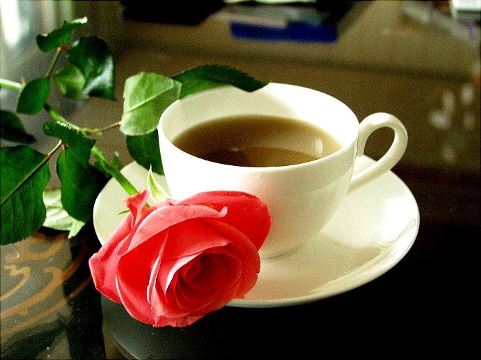 Открытки доброе утро на каждый день
